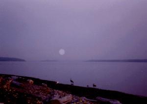 Camano Moon